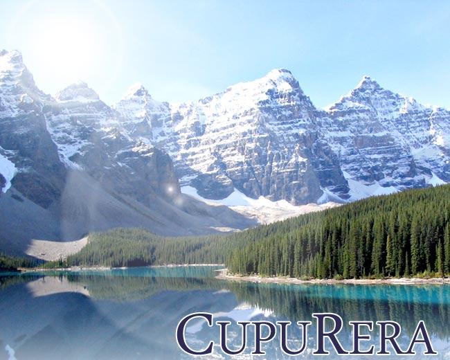 クプレラ CUPURERA CLASSIC クラシック ラム&ミレット・キャット プロバイオティクス&エンザイム&グルテンフリー