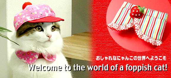 猫服いっぱい…楽しくご覧になってくださいませ。〜おしゃれなにゃんこの世界へようこそ!