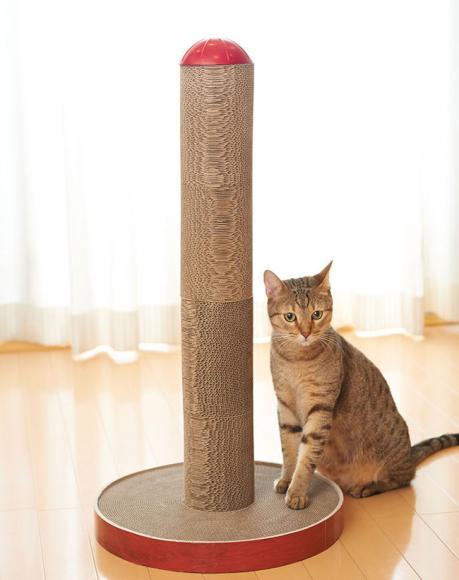 ... 公式通販サイト|猫の首輪・猫 : 円柱の公式 : すべての講義