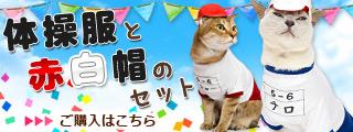 ゴロにゃんオリジナル猫服・体操服と赤白帽のセット