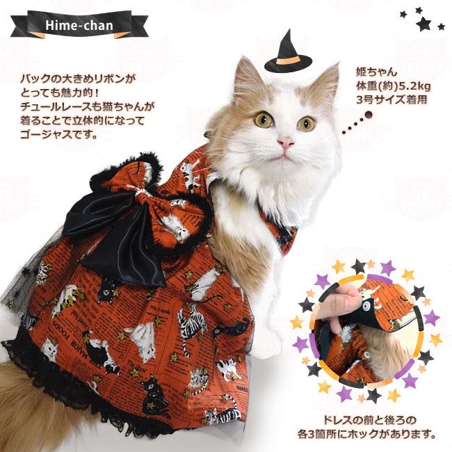 ゴロにゃんオリジナル猫服 ハロウィンでも大活躍!カントリーキャットドレス