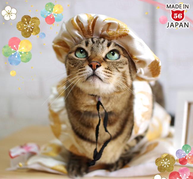 ゴロにゃんオリジナル 猫服 豪華長寿服セット