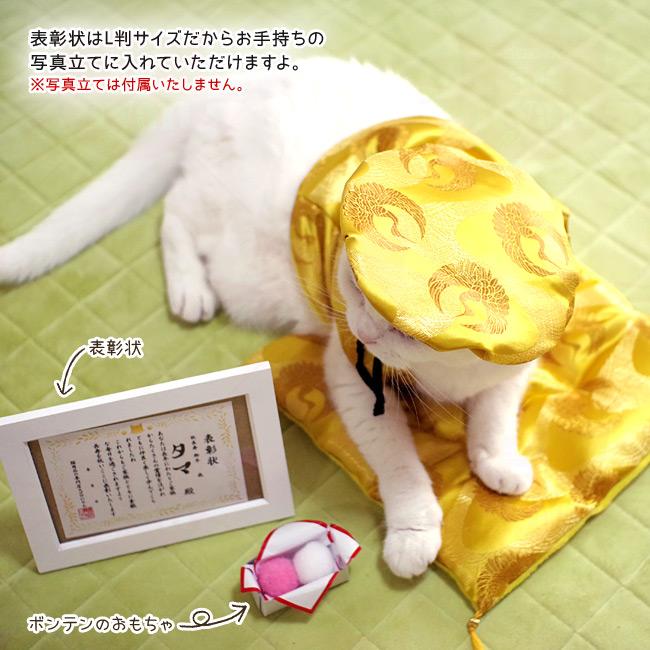 ゴロにゃんオリジナル 猫服 豪華長寿服セット 表彰状の説明:L判サイズだからお手持ちの写真立てに入れていただけますよ。※写真立ては付属いたしません。