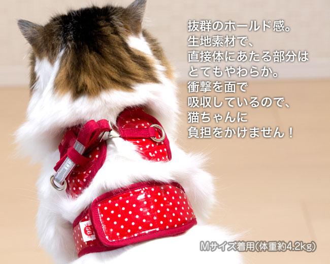 ゴロにゃん オリジナル猫用ハーネス ダブルブロックタイプ[特許取得済] 安心安全の純国産 猫ハーネス着用画像