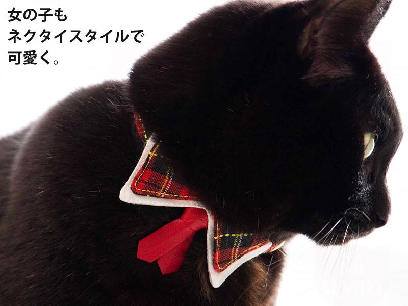 ちょこタイ猫首輪 素敵男子 彼女のハートをゲット