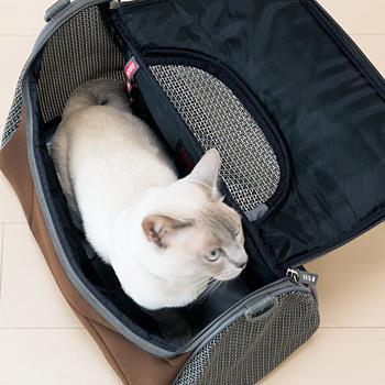 ペットキャリー ペットアヴィオン PET AVION Mサイズ 約4kgの猫ちゃんが入った状態です。