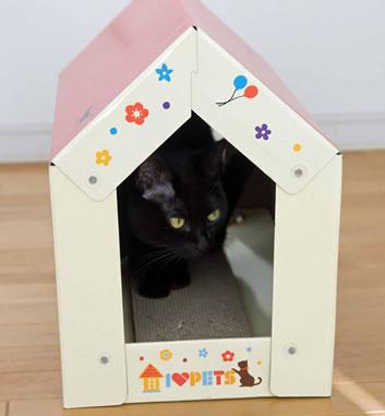 キャットスクラッチハウス〜猫ちゃん大好きトンネルハウス型〜両面使えて2倍お得!キャットニップパウダー付き