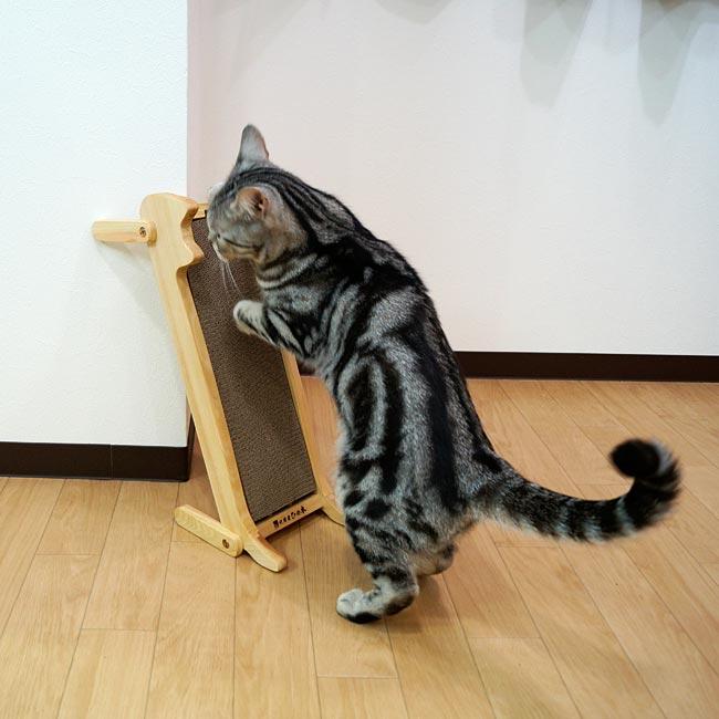 猫の爪みがき 純国産ひの木 キャティーマンハヤシ