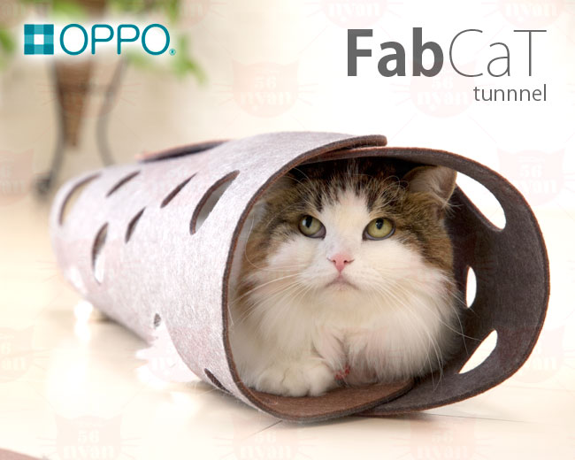 OPPO FabCat tunnel