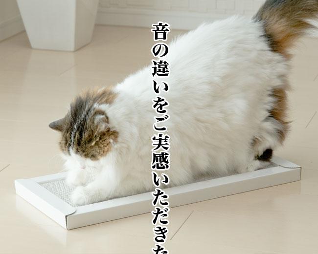 This is 硬い爪とぎ スーパーハードスクラッチャー ゴロにゃんオリジナル