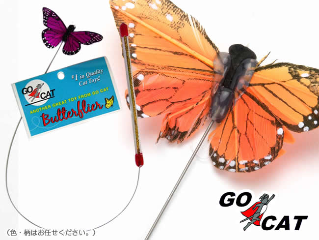 Butterflier バタフライヤー
