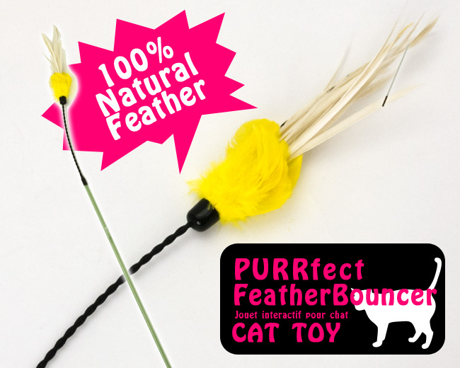 PURRFECT FEATHER BOUNCER CAT TOY