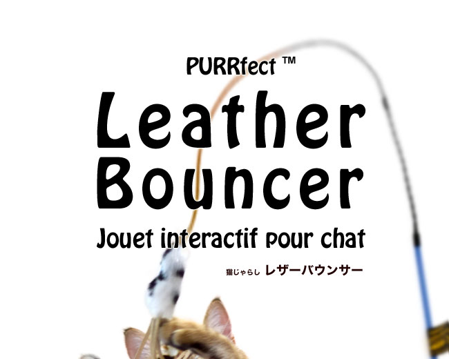 PURRfect(TM) LEATHER BOUNCER レザーバウンサー