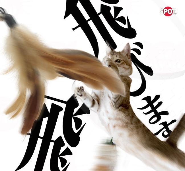 猫じゃらし キティー ティーザーワンド