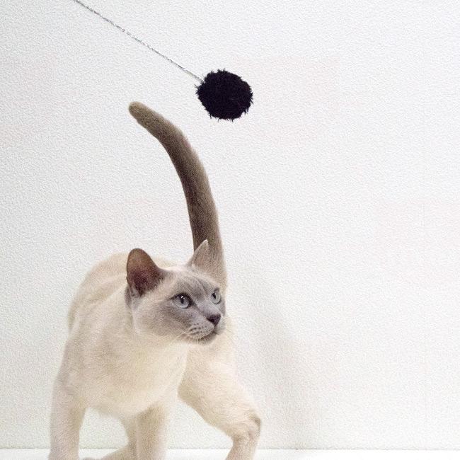 ゴロにゃんオリジナル猫じゃらし 指してあそ棒