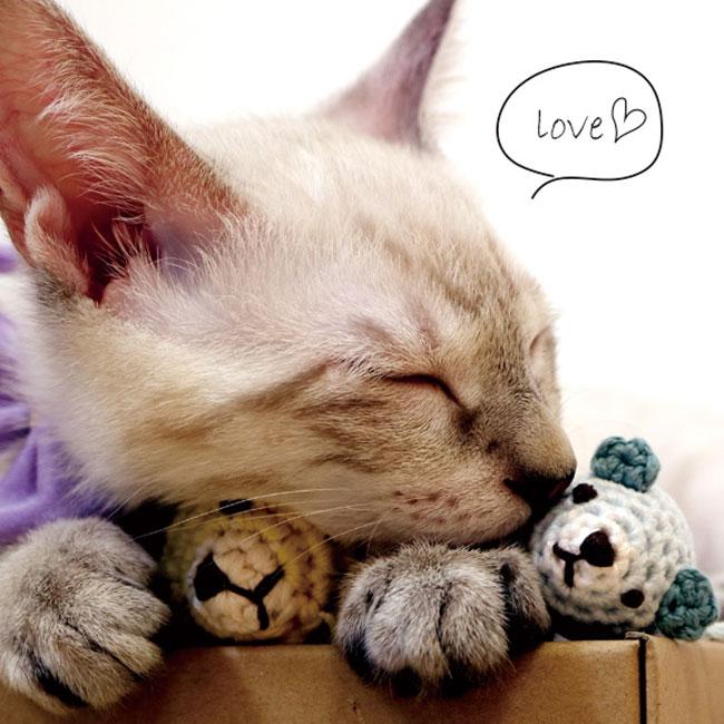 いたずらネズミとコロコロボール 猫用おもちゃ (ウール100% フェルトボール)