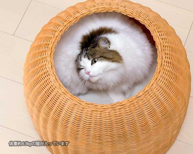 猫壺 ラタンキャットポット