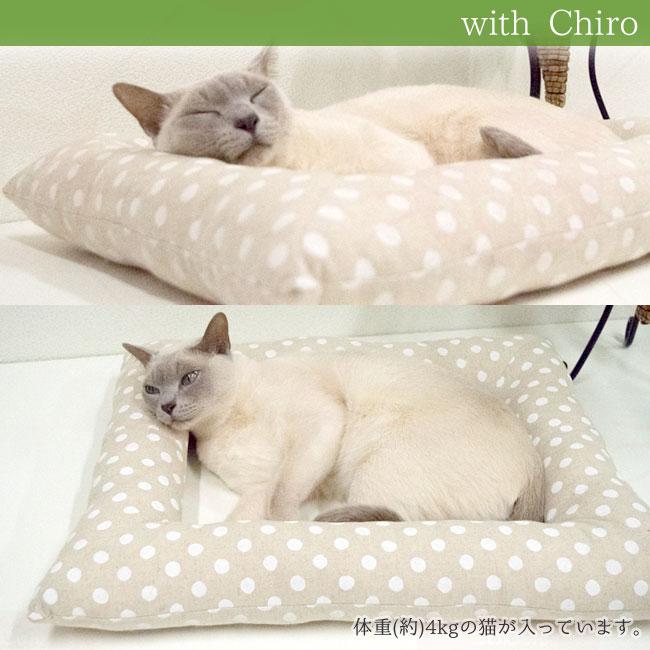 猫用ベッドゴロにゃんオリジナル どこでもベッド スクエア 四角型 猫写真