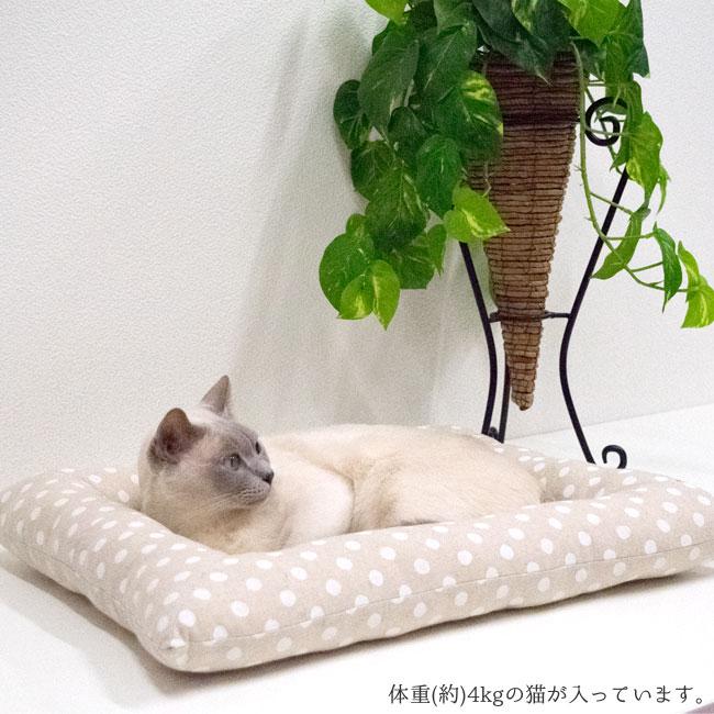 猫用ベッドゴロにゃんオリジナル どこでもベッド スクエア 四角型