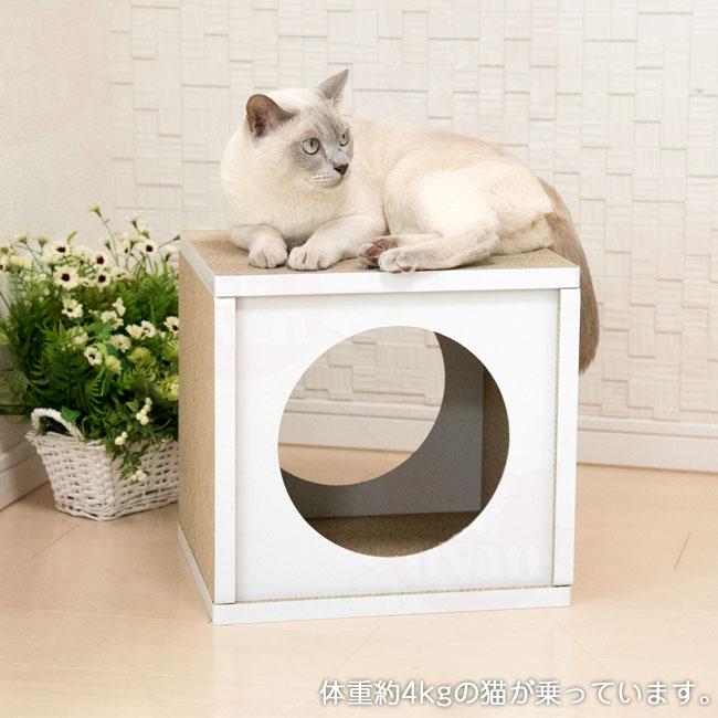 猫用爪とぎ ペットプロ Anikitty キャットハウス