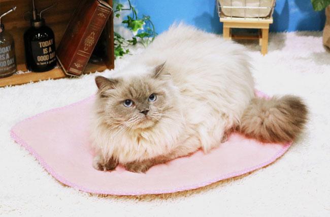 猫用ベッド 猫用マット ペット用マット JUTE 麻100% やさしいマット 猫型 ドギーマン