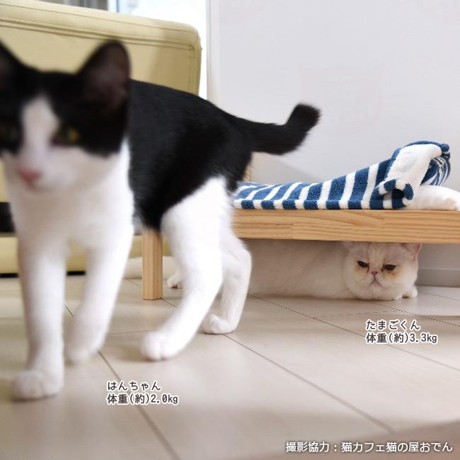 ペット用ウッドベッド