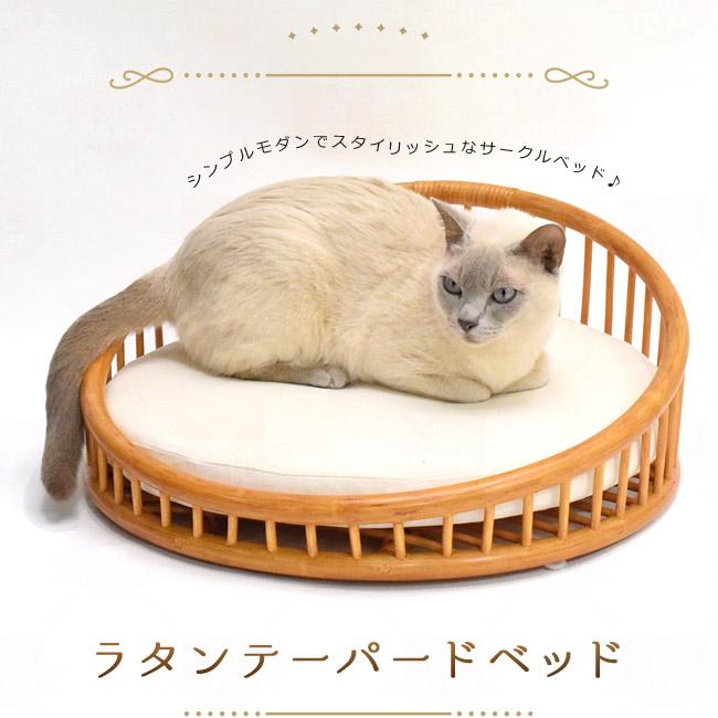 シンシアジャパン ラタンテーパードベッド