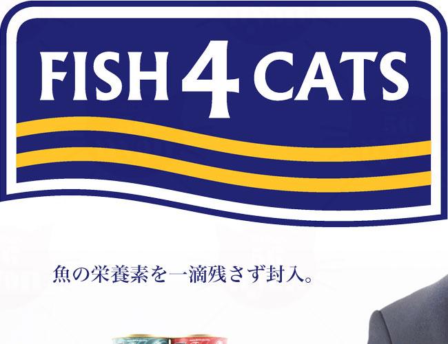 フィッシュ4 キャット 猫缶シリーズ ツナ&イカ