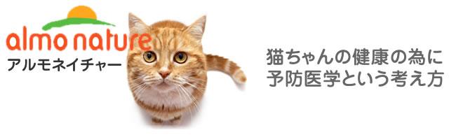 猫ちゃんの健康の為に予防医学という考え方