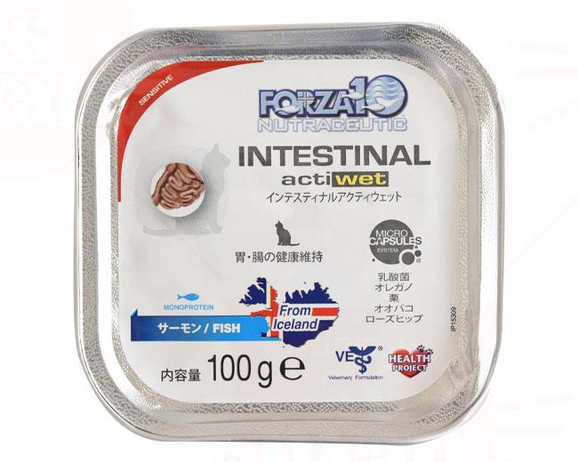 フォルツァ10 インテスティナルアクティウェット
