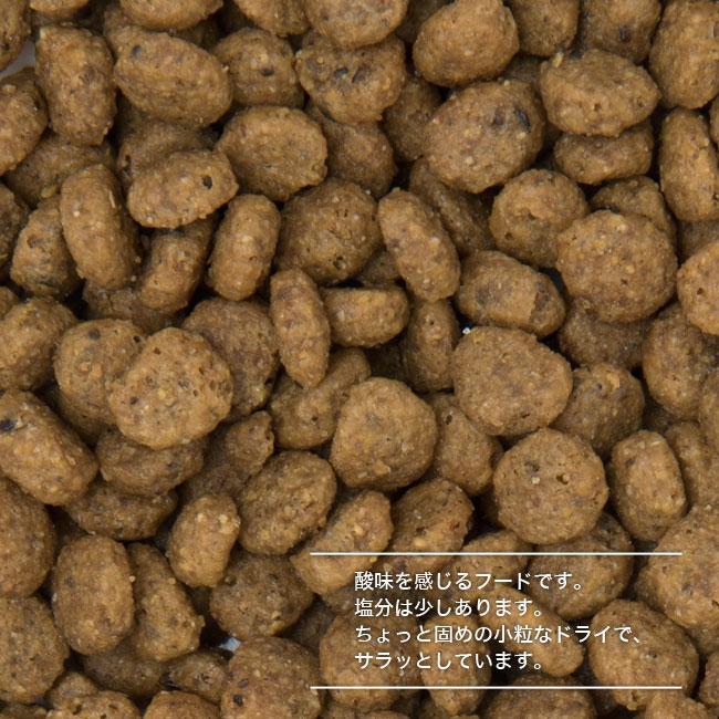 フォルツァ10(フォルツァディエチ)成猫用ドライフード エブリデイ ビオ チキン
