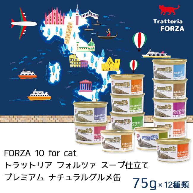 フォルツァ10 プレミアムフォルツァ75g缶コンプリートボックス トラットリアフォルツァ
