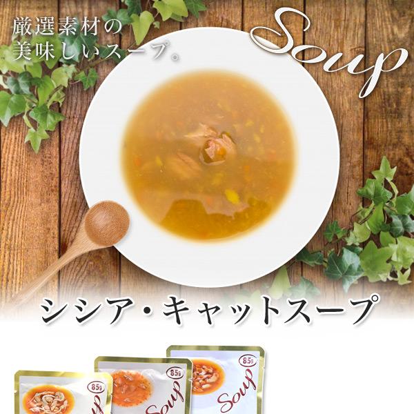 シシア キャット・スープ