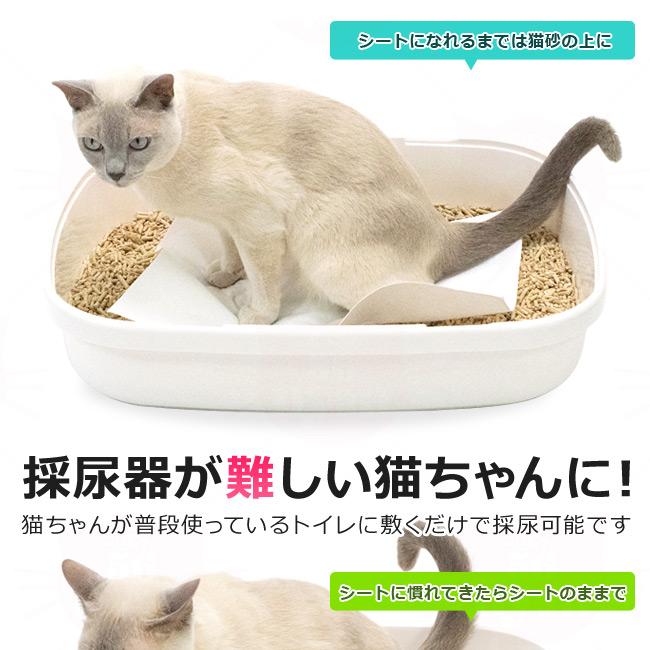 猫用 採尿シート 採尿器が難しい猫ちゃんに