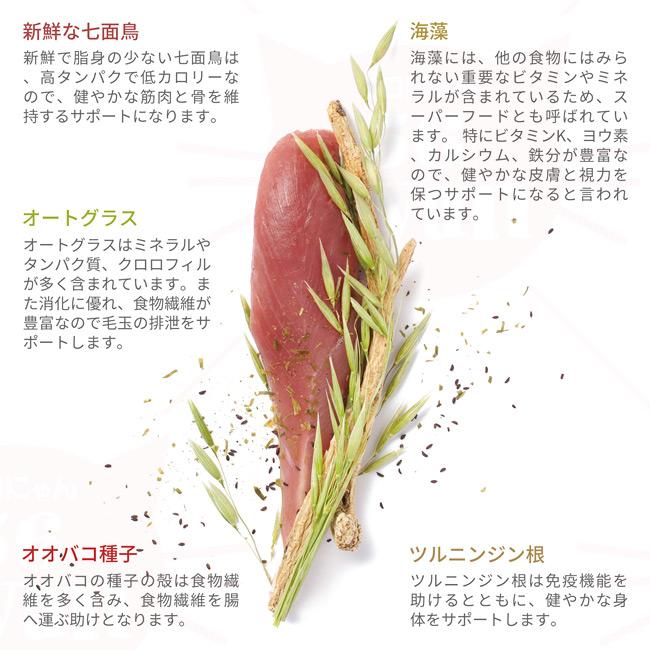 VIGOR&SAGE ビゴー&セージ 成猫用 オートグラス ヘアボールコントロール