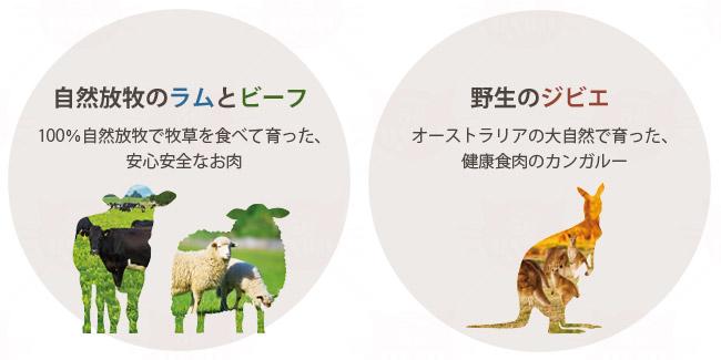 自然放牧のラムとビーフ:100%自然放牧で牧草を食べて育った安心安全なお肉、野生のジビエ:オーストラリアの大自然で育った健康食肉のカンガルー