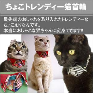 ちょこトレンディー猫首輪