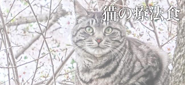 猫のための猫用療法食 ケアフード