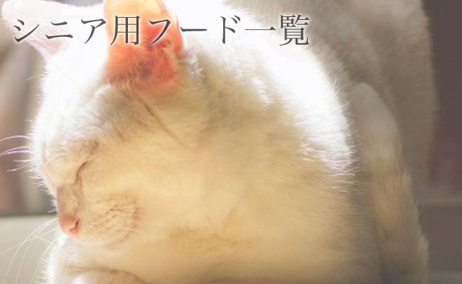 シニア猫用のキャットフード ドライ ウェット 猫缶